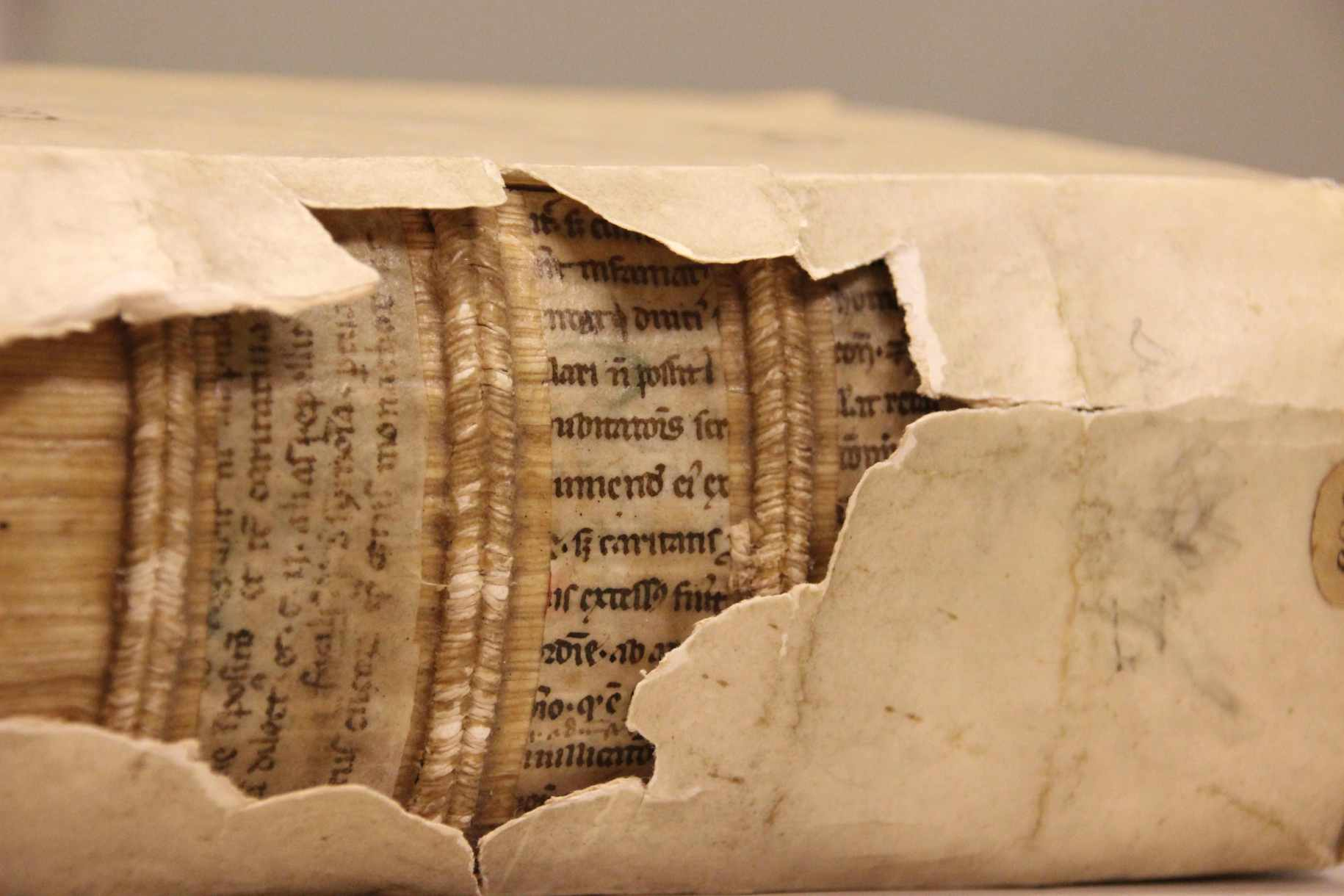 Damaged binding in Leiden University Library shows hidden fragment. Photo by Erik Kwakkel.