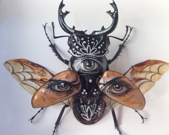 A beetle with human eyes on its wings.