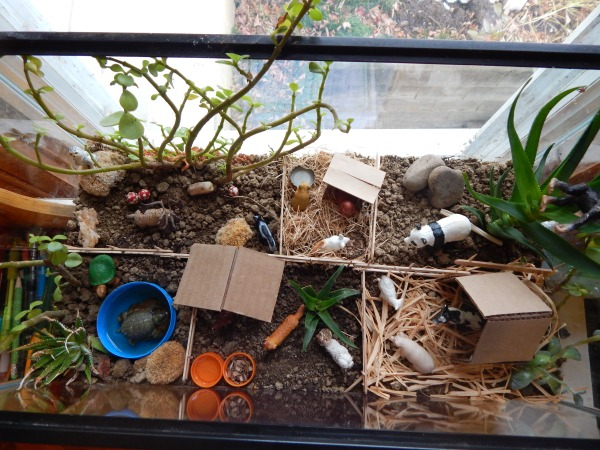 allisonfelt-doll-zoo-terrarium-clemmy-009